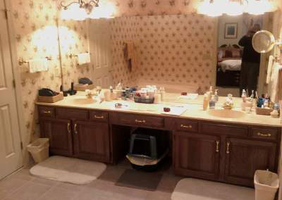 Bath vanity lacking useful storage